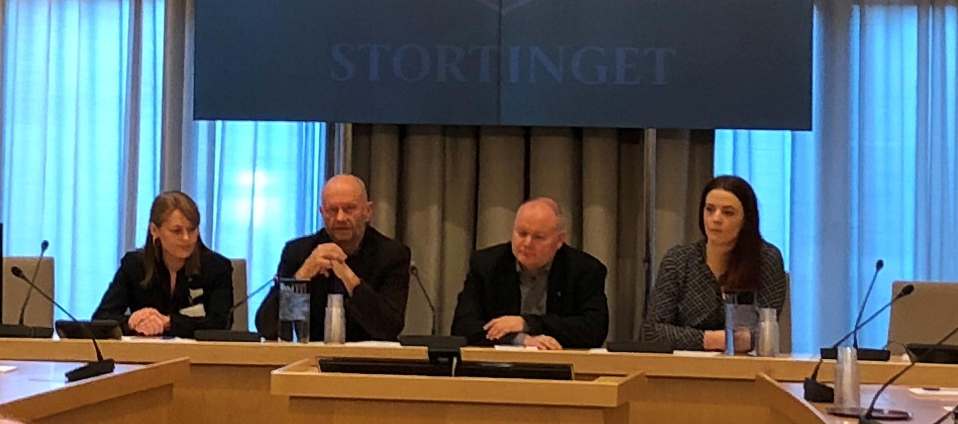 Stein Lier-Hansen på høring i Energi- og miljøkomiteen på Stortinget 23. oktober 2018 om Statsbudsjettet for 2019.