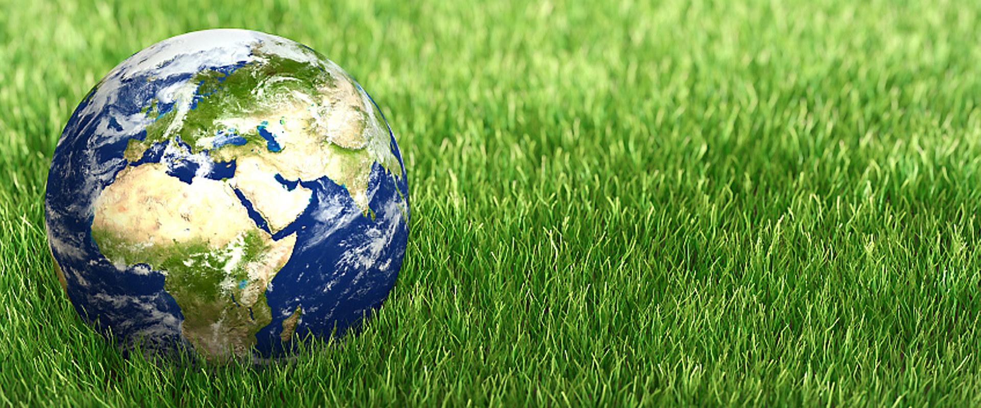 Jordkloden på gress
