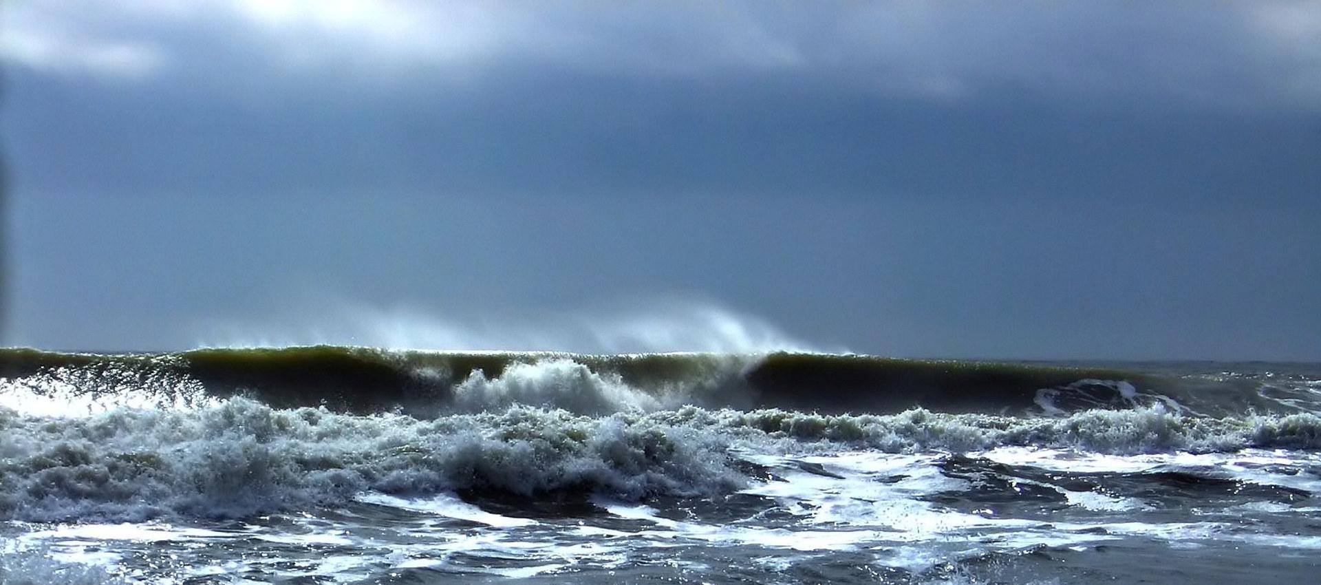 Bølger i havet