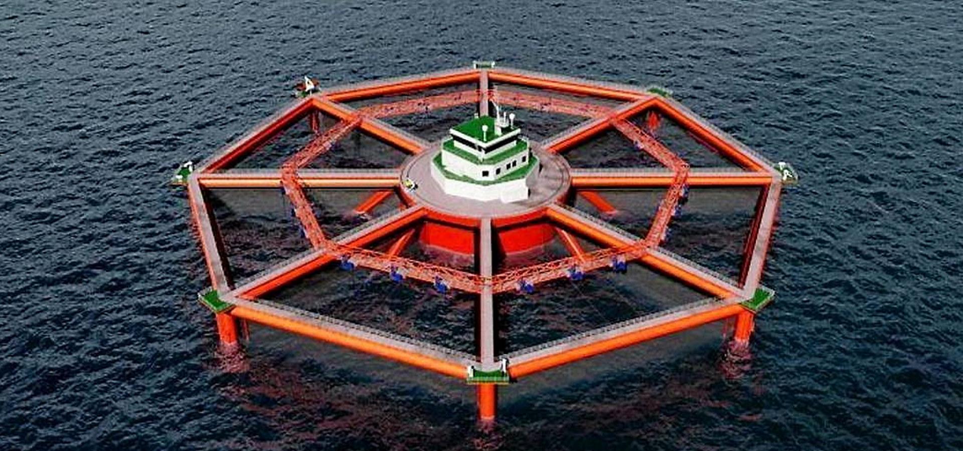 Havbruk til havs